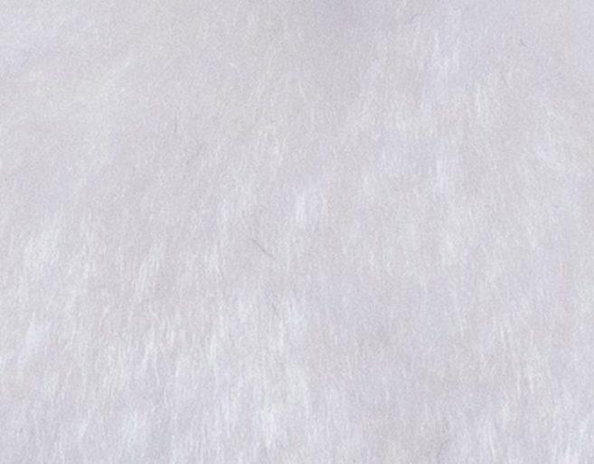 Carnaval fiesta pelo liso blanco