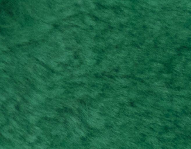 Carnaval fiesta pelo liso verde billar
